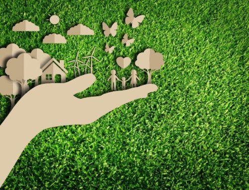 L'importanza di un ambiente salubre in casa